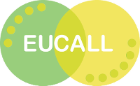 EUCALL Joint Foresight Topical Workshop: Theory and Simulation of Photon-Matter Interaction